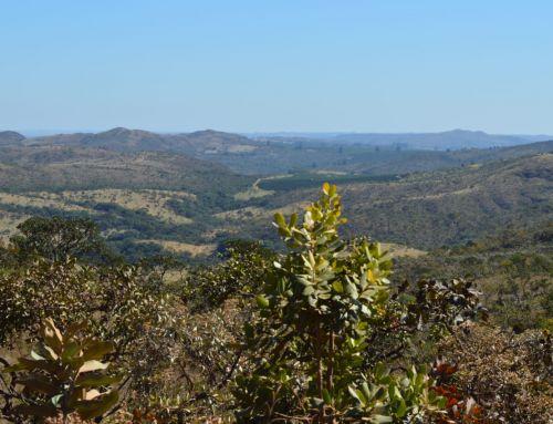 Metodologia para construção de paisagens produtivas sustentáveis chega a Serra do Salitre
