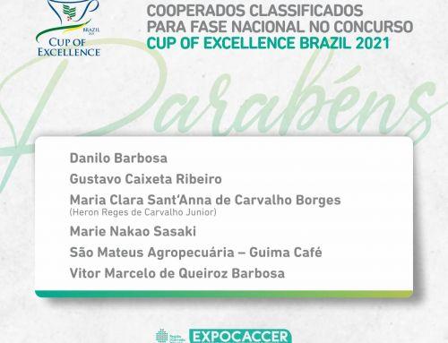 COOPERADOS EXPOCACCER SÃO CLASSIFICADOS PARA FASE NACIONAL DO CUP OF EXCELLENCE 2021